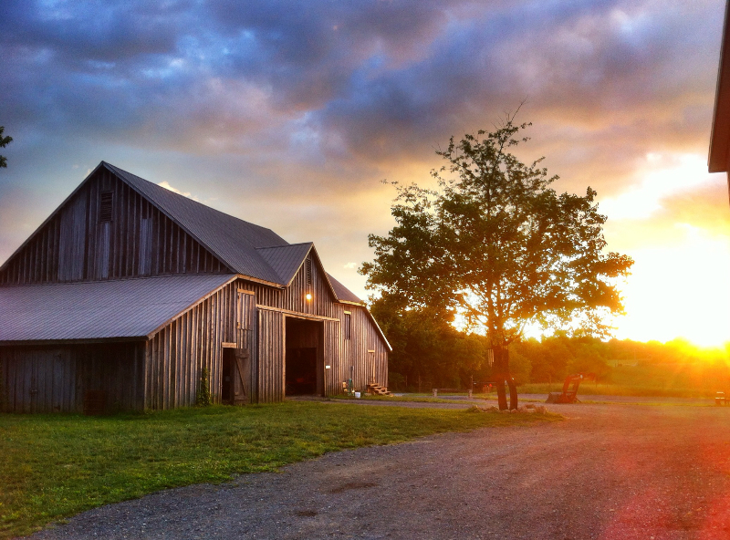 Gorman-Farms-Barn-Sunrise